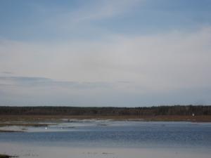 Kivijärvi, Esko Keränen