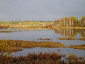 Kivijärvi lokakuu 2007