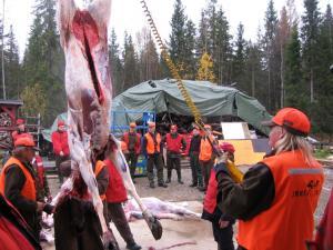 Nainen voiman oikealla puolella, Esko Keränen 2010